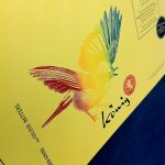 Iris Print _ Colour Matters
